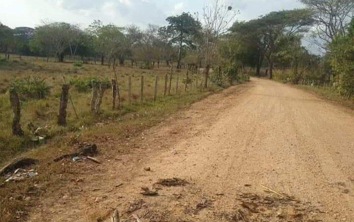 Desactivan artefactos explosivos en vía rural de Chinú, Córdoba