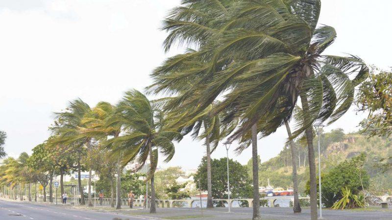 Alerta por fuertes vientos en la región caribe