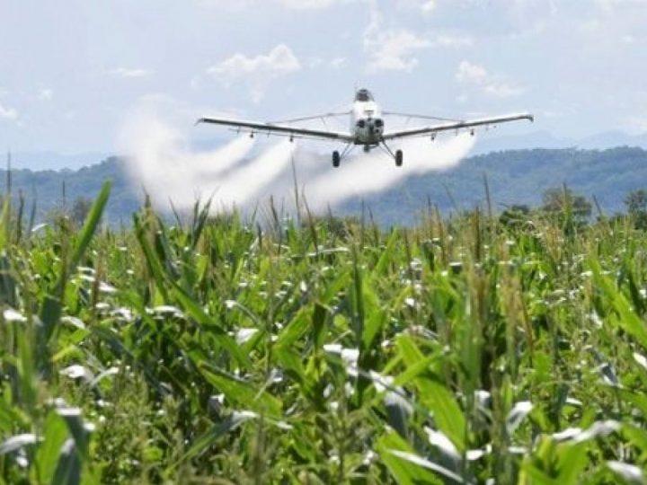 Gobierno emitió decreto para que se reactive la aspersión aérea con glifosato en Colombia
